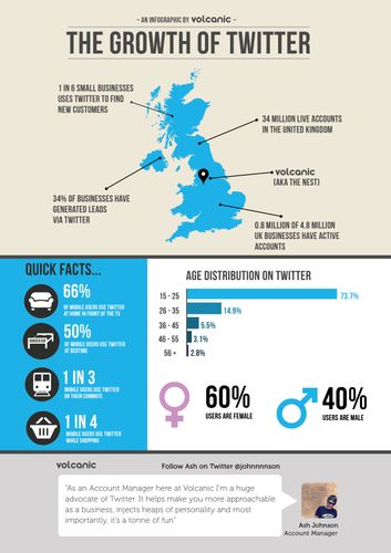 Infographic Twitter A4